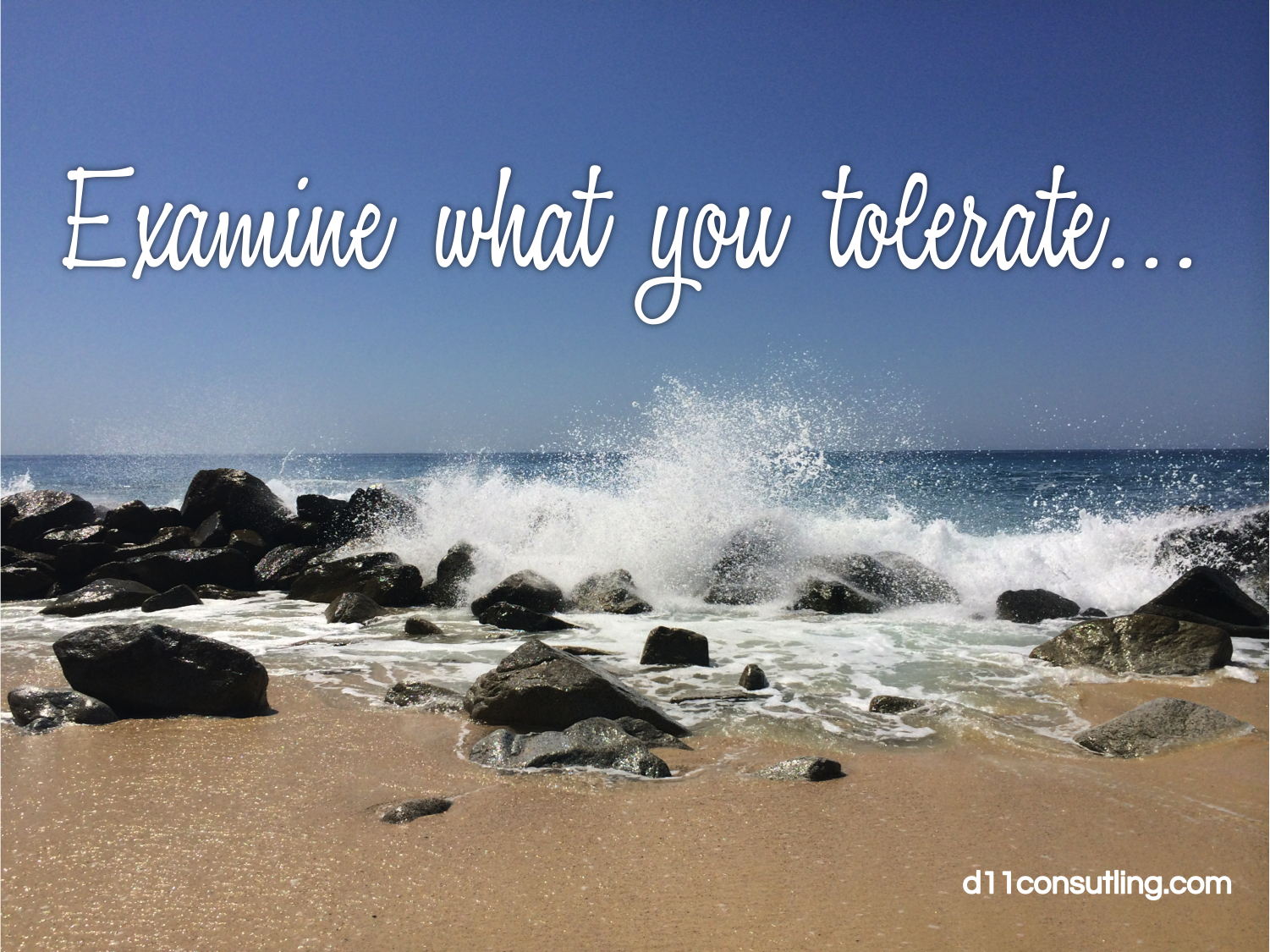 examine-what-you-tolerate